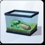 Surfer Leaf Frog