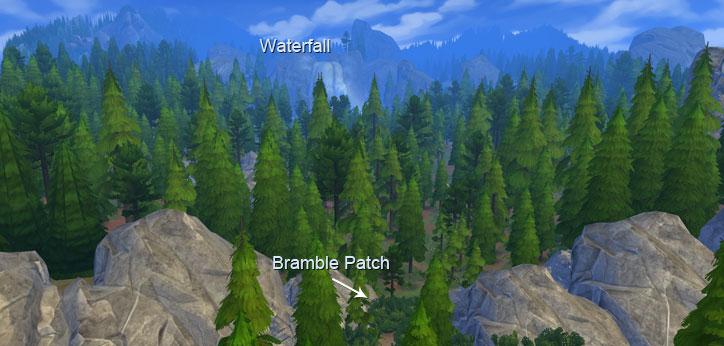 Bramble Patch Location