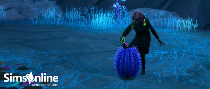 Preview Alien plants