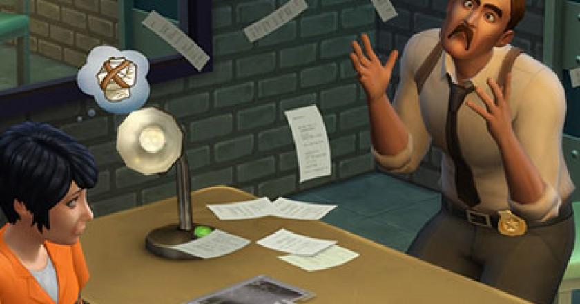 detective career