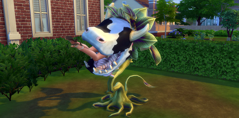 Killed by Cowplant in The Sims 4