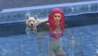 Swim with your dog