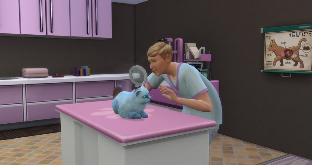 Cure sick pets as a vet