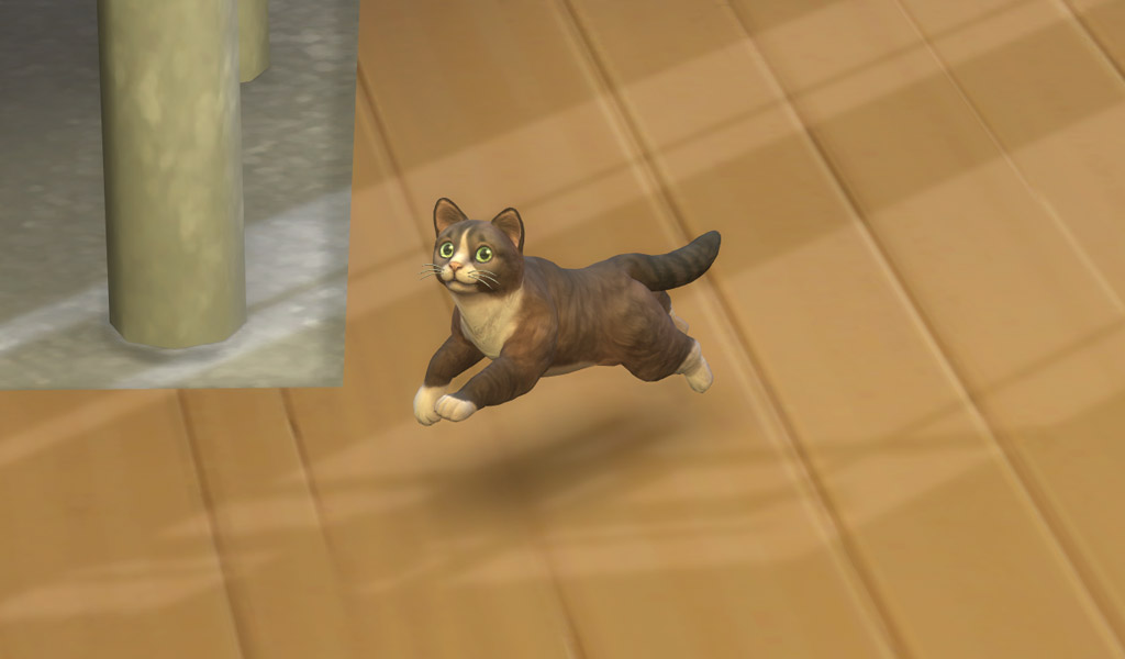 Get Puppies And Kittens In The Sims 4 Sims Online