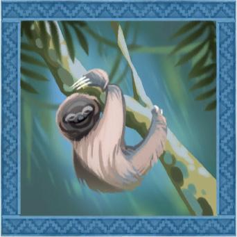 Jungle-Adventure-Sloths